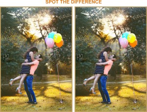 Spot the difference1 (1)