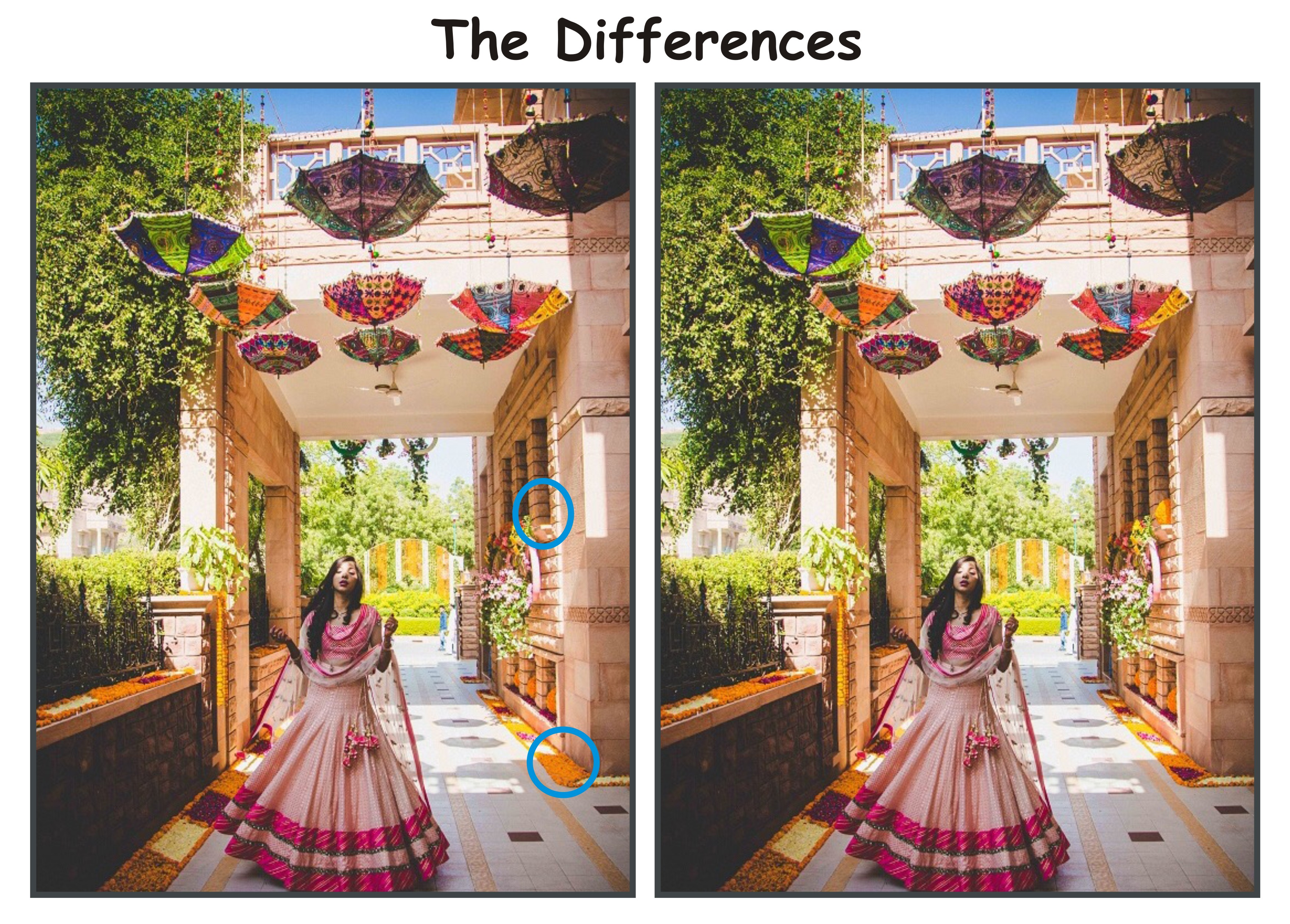 The Differences2 (2)