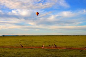 air balloon safari