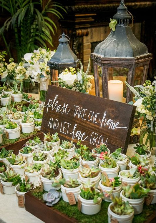 """Succulents captioned as """"Please take one and let love grow"""" for wedding favours 