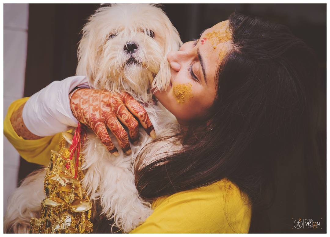 BRIDE AND PET CANDID PCTURES | DOGS AT WEDDINGS | CUTE PETS AND BRIDAL PORTRAIT | MEHENDI PICTURES | KALEERE PICTURES | FUNCTION MANIA | THIRD VISION STUDIO
